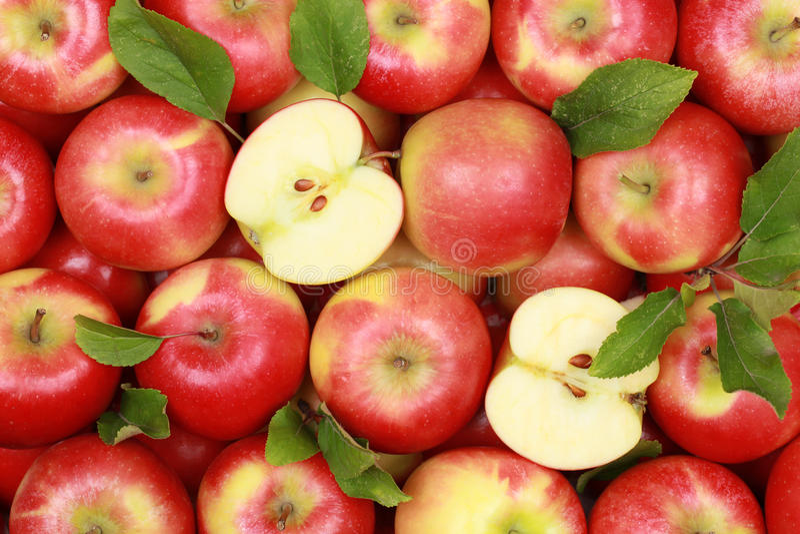 Красные яблоки с листьями стоковые изображения rf