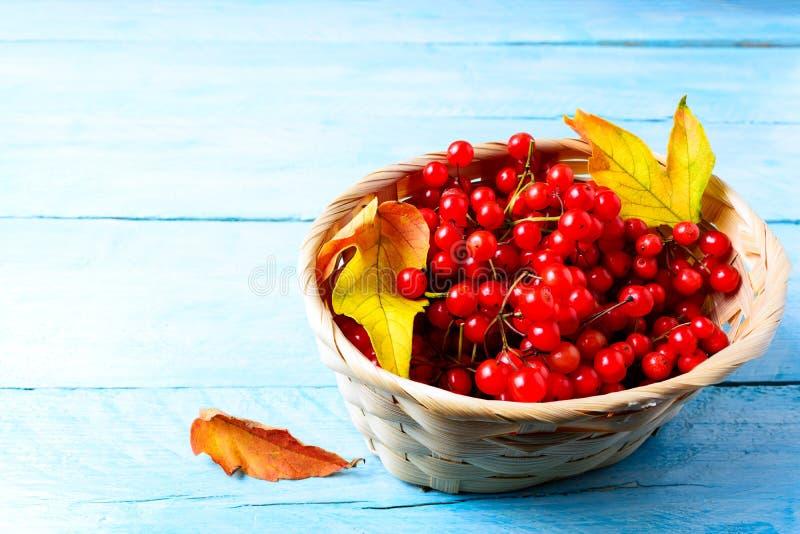 Красные ягоды леса в плетеной корзине на голубой деревянной предпосылке стоковое изображение rf