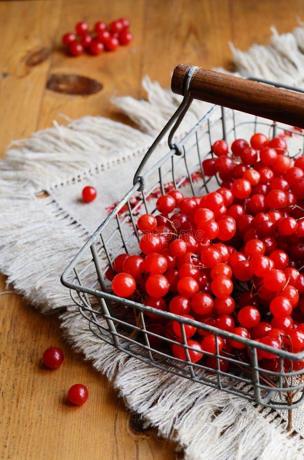 Красные ягоды калины в корзине провода стоковые фотографии rf