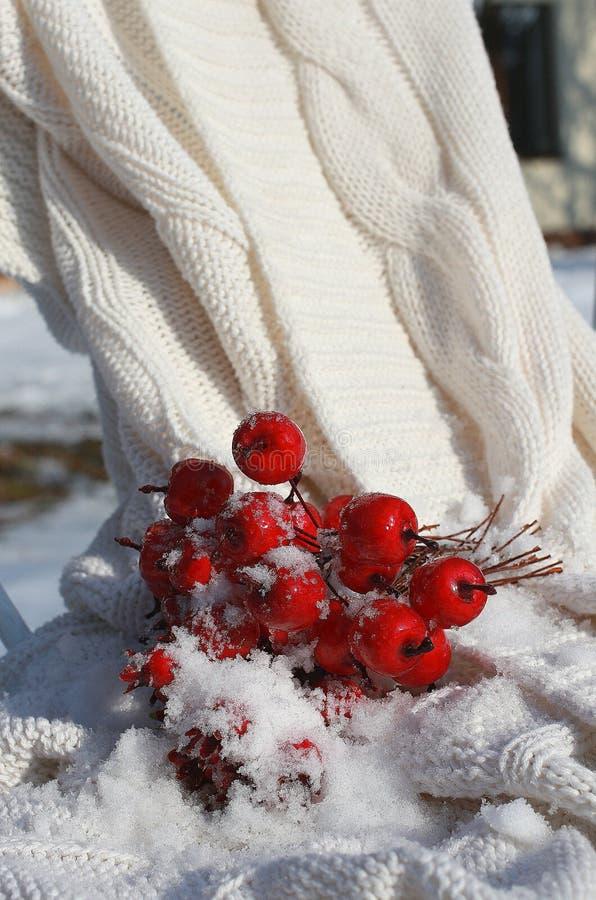 Красные crabapples на белом одеяле стоковые фотографии rf