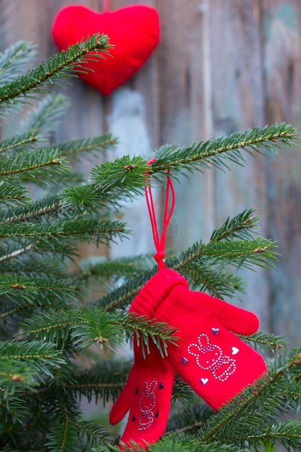 Красные mittens связанные в рождественской елке стоковая фотография rf