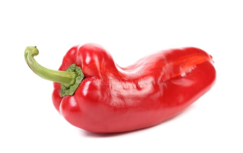 Красный болгарский перец. стоковая фотография rf