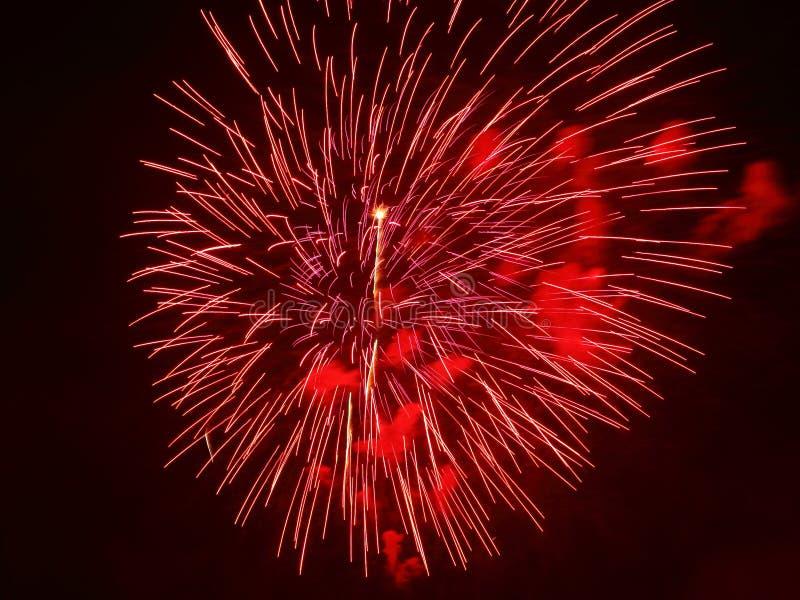 Красный взрыв феиэрверка стоковые фото