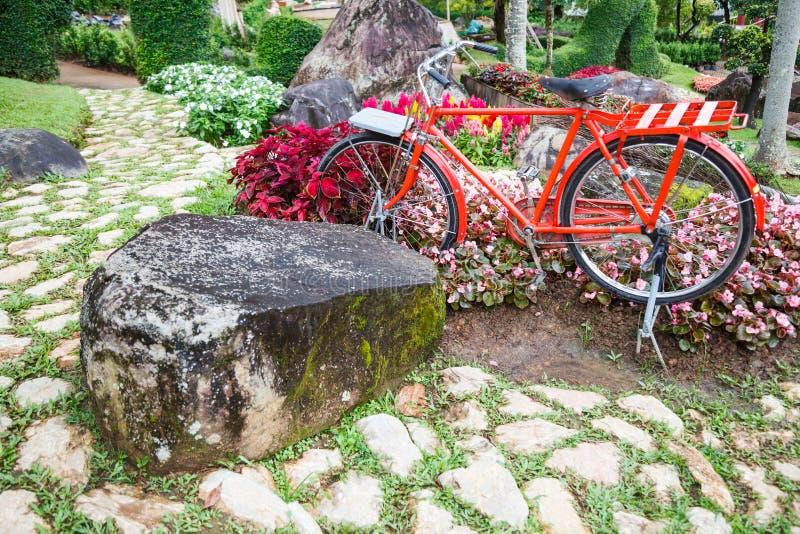 Красный винтажный велосипед в парке с декоративным орнаментальным садом Деятельности при семьи лета внешние, тренировка в природе стоковое изображение
