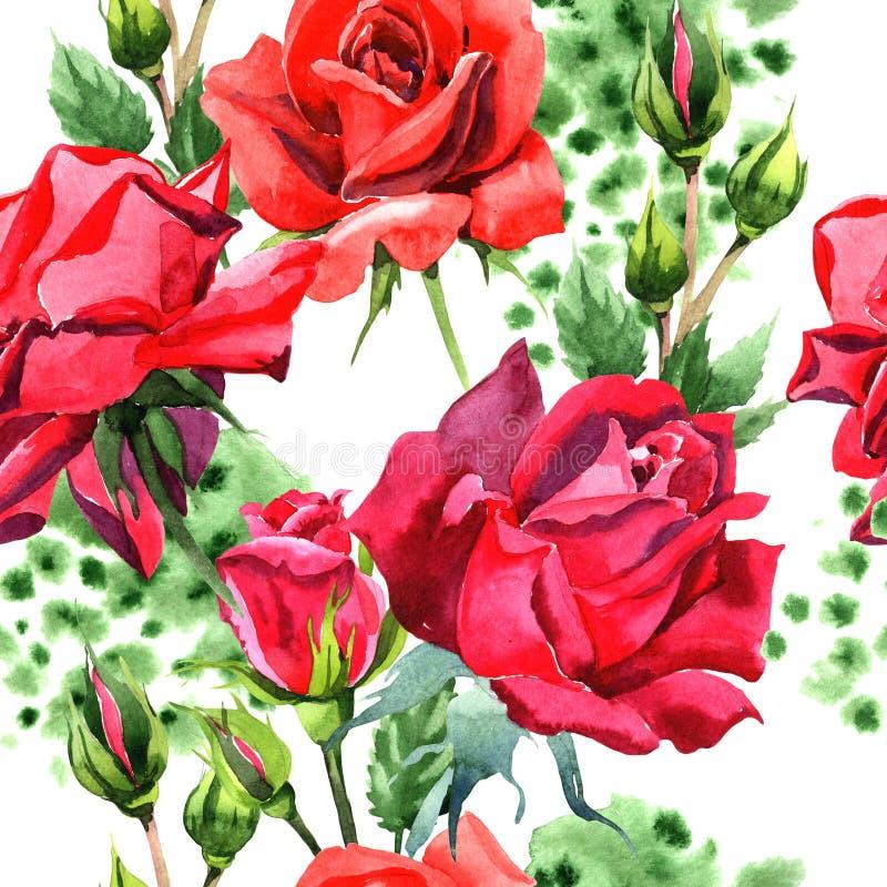 Красный гибрид поднял Флористический ботанический цветок Безшовная картина предпосылки Текстура печати обоев ткани иллюстрация штока
