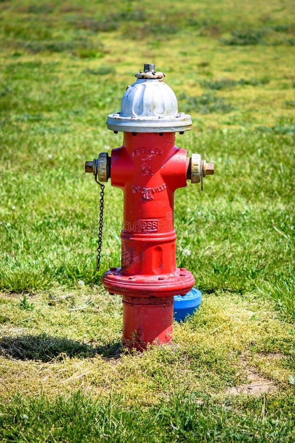 Красный жидкостный огнетушитель в траве стоковые изображения rf