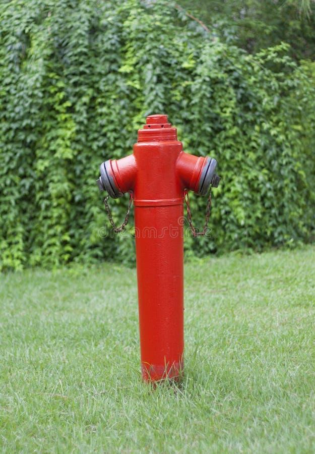 Красный жидкостный огнетушитель против зеленой лужайки стоковая фотография rf