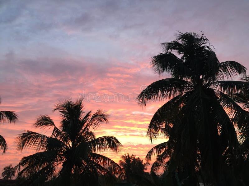красный заход солнца неба стоковое изображение rf