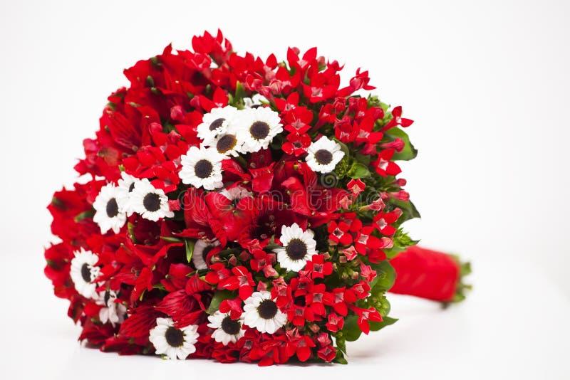 Красный изолированный букет цветка стоковые фотографии rf