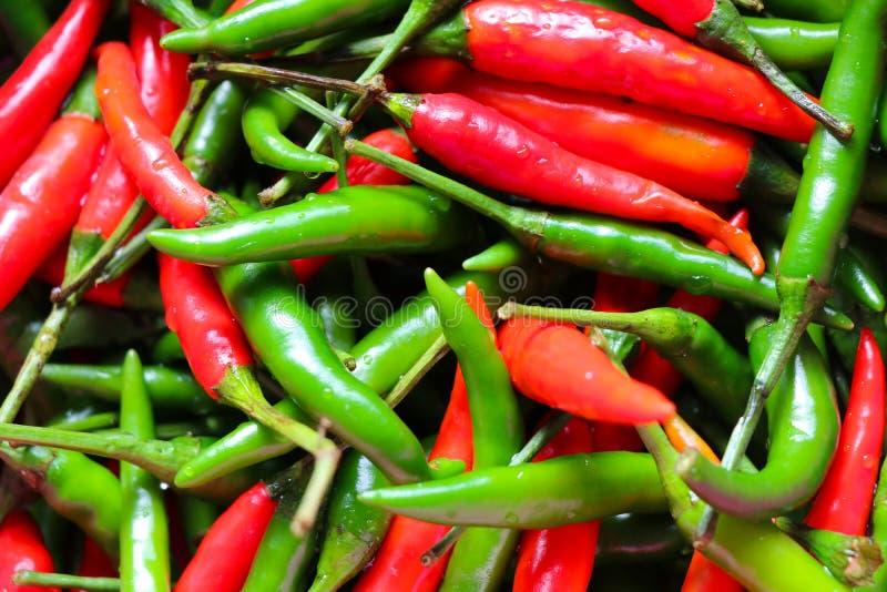 Красный и зеленый тайский перец чилей стоковое фото