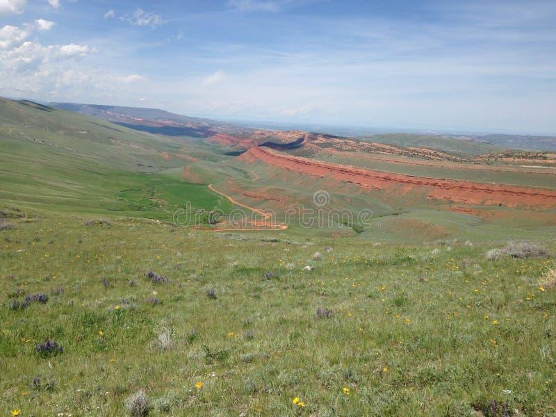 Красный каньон стоковые фотографии rf