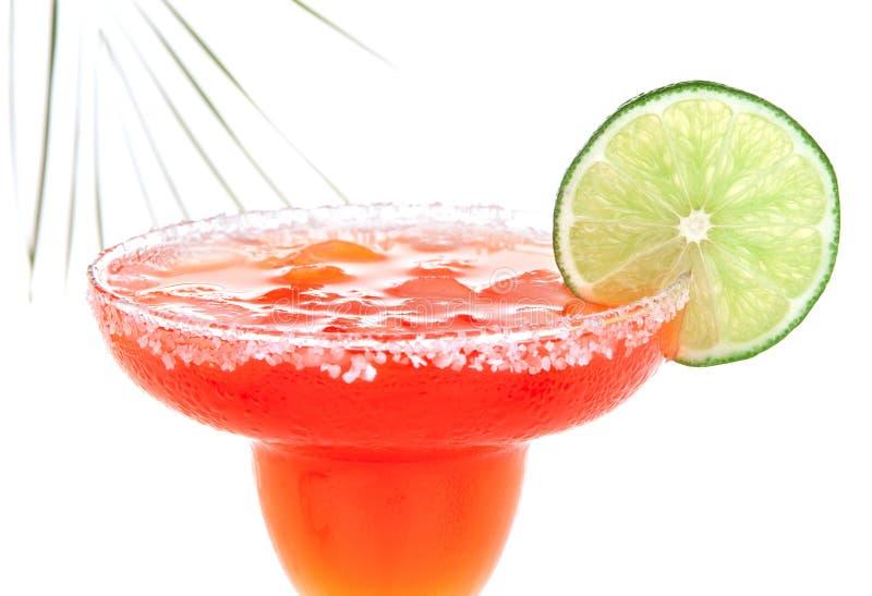 Красный коктеиль Маргариты с куском мяты и известки в охлаженном соли стоковое изображение