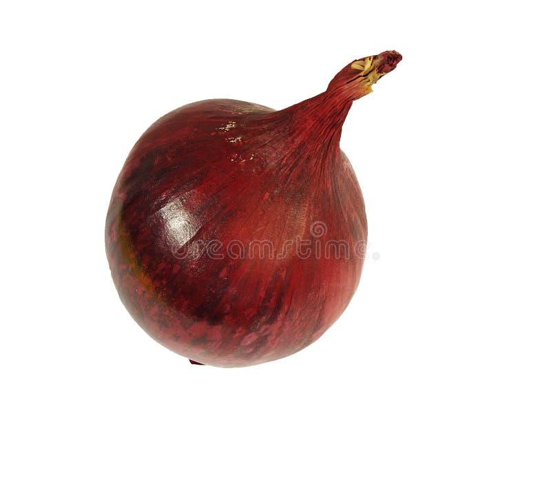 Красный лук Стоковые Фото