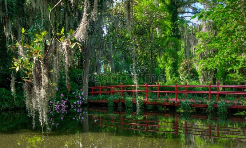 Красный мост над водой, с мхом покрыл деревья sc charleston стоковое изображение