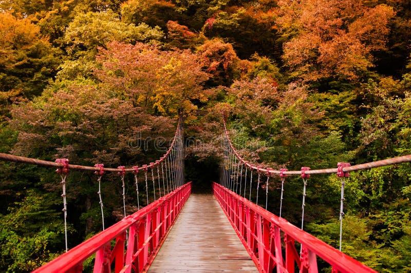 Красный мост, Kami отсутствие Iwahashi в долине Dakigaeri - Senboku, Akit стоковое изображение