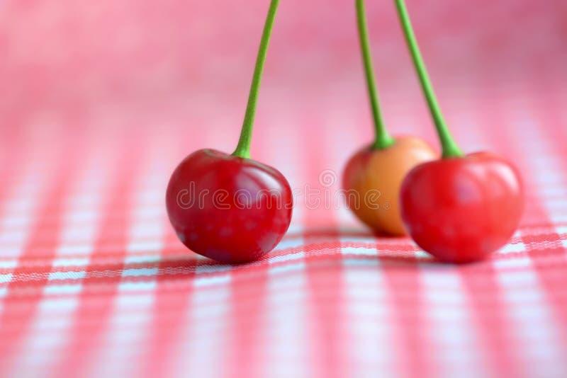 Красный натюрморт вишен стоковые фото