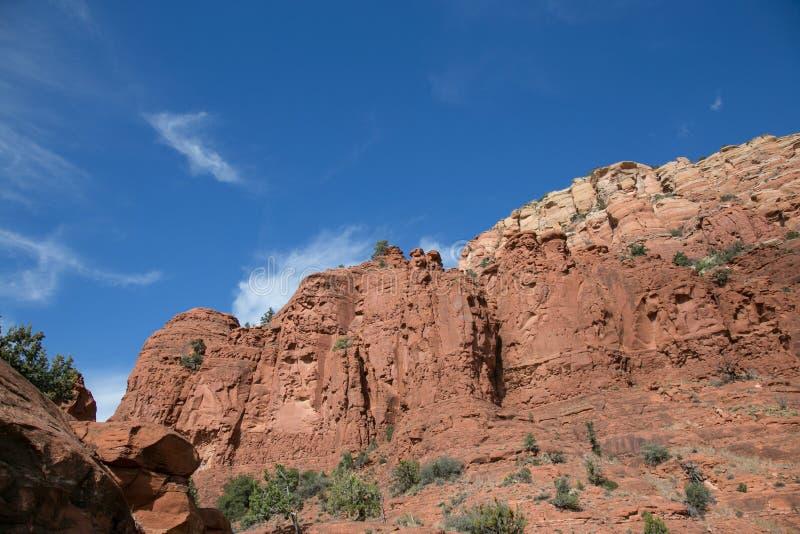 Красный национальный парк утеса, Sedona, Аризона стоковое изображение rf