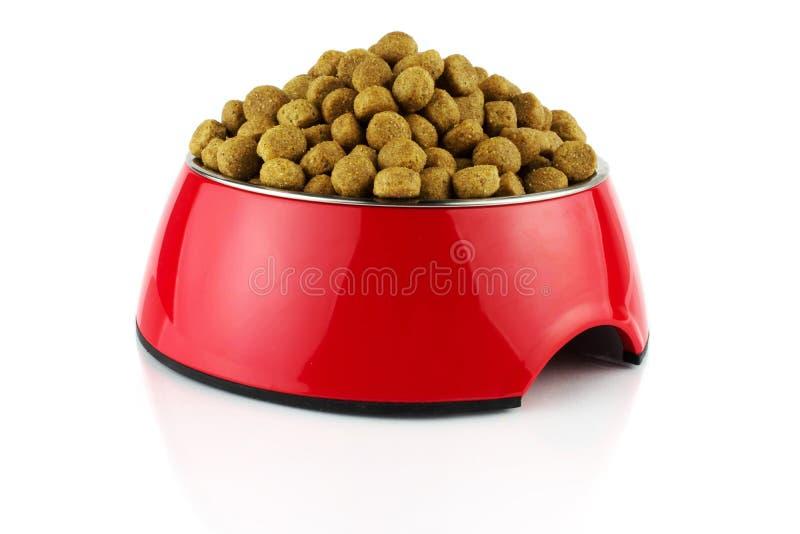 Красный пищевой контейнер меткрилата шара для собаки или кота с едой r стоковые изображения rf