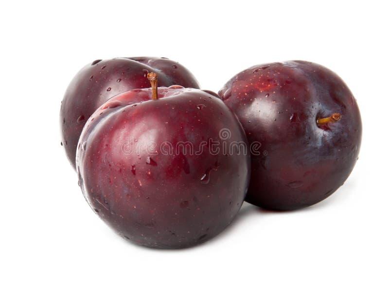 Красный плодоовощ сливы стоковое изображение
