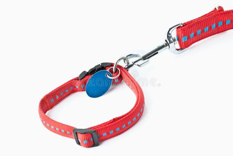 Красный поводок собаки стоковое фото rf