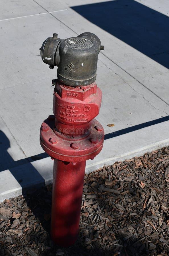 Красный пожарный гидрант на улице весной стоковые фотографии rf