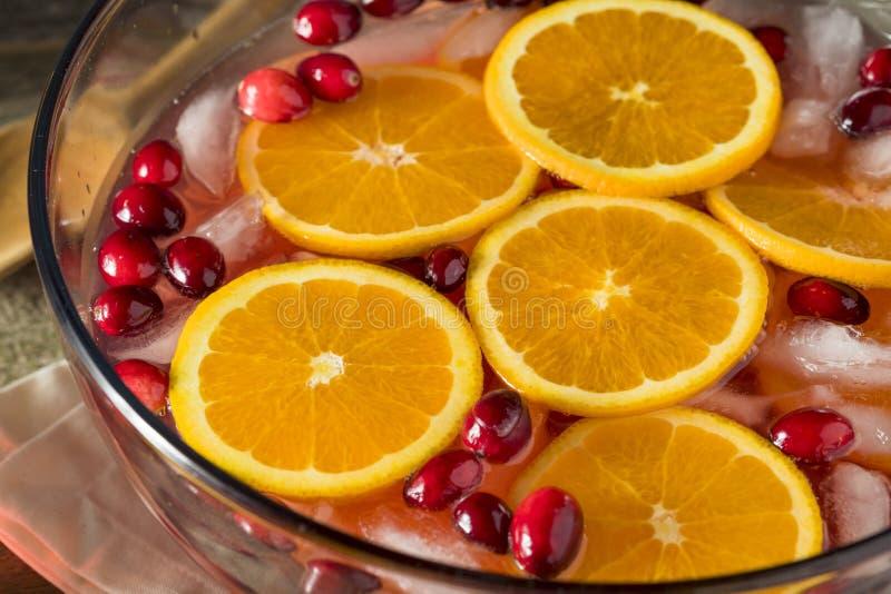 Красный пунш праздника клюквы стоковая фотография