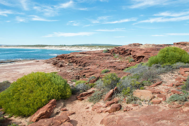Красный пляж блефа: Песчаник и море стоковые изображения rf