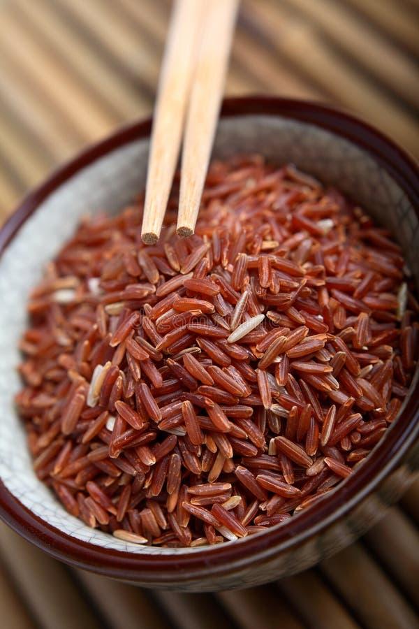 красный рис стоковое фото