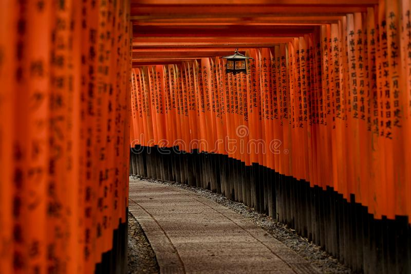 Красный строб Torii на святыне Fushimi Inari Taisha, Киото Японии стоковая фотография rf