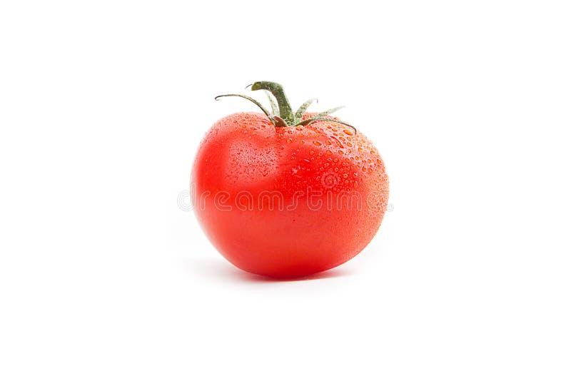 красный томат стоковые фото