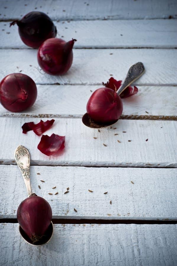 Красный лук стоковые фотографии rf