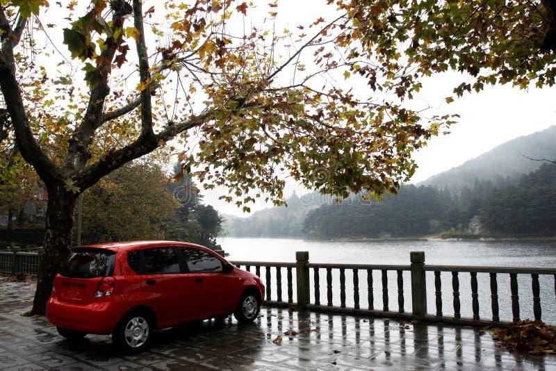 красный цвет автомобиля осени стоковые изображения
