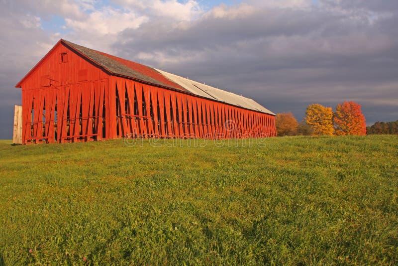 красный цвет амбара стоковое фото rf