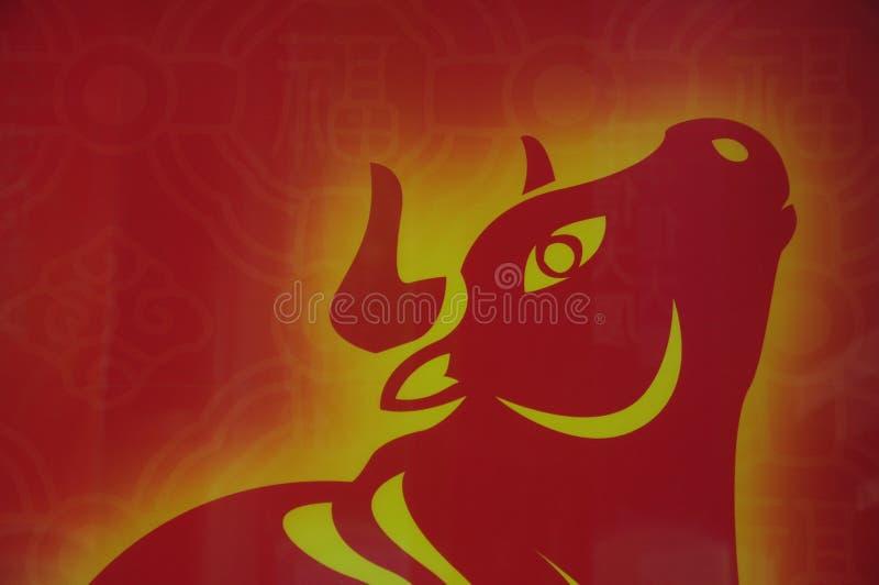 красный цвет быка стоковое фото
