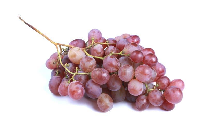 красный цвет виноградины сочный стоковая фотография rf