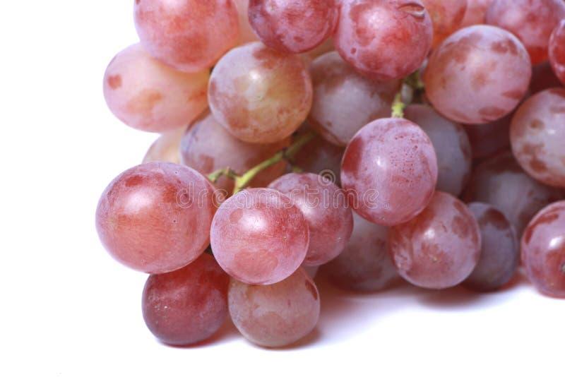 красный цвет виноградины сочный стоковое фото rf
