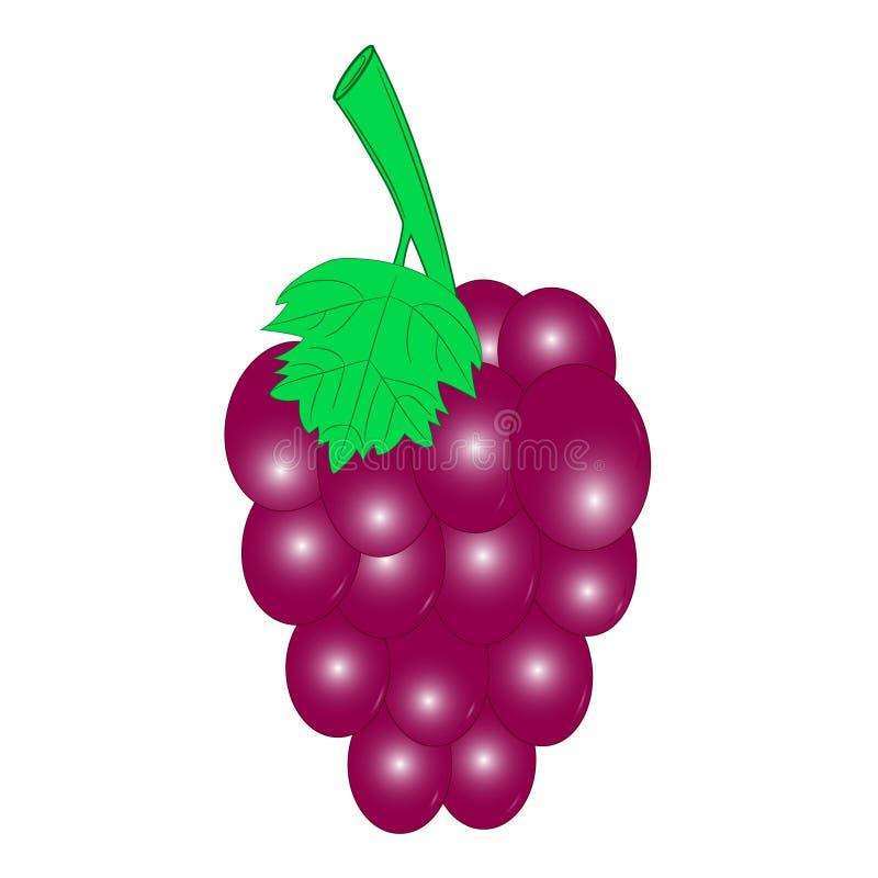 Красный цвет виноградины иллюстрация вектора