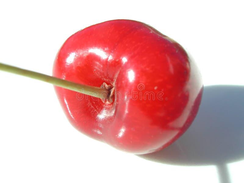 красный цвет вишни близкий вверх стоковые фото