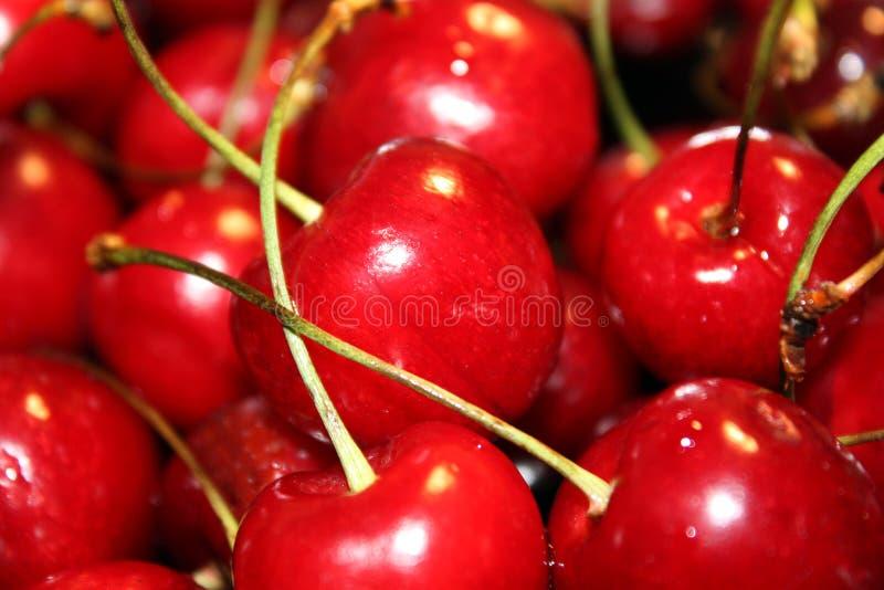 красный цвет вишни свежий стоковое фото rf