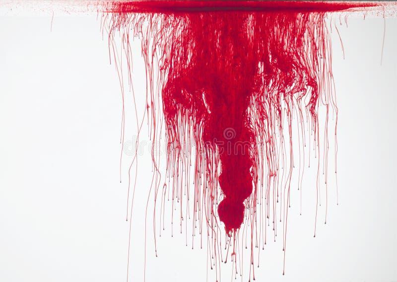 Красный цвет в воде стоковое изображение rf