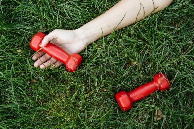 красный цвет гантели стоковая фотография rf
