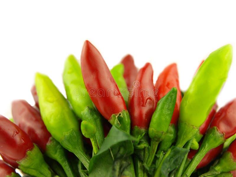 красный цвет горячего перца chili близкий очень стоковая фотография