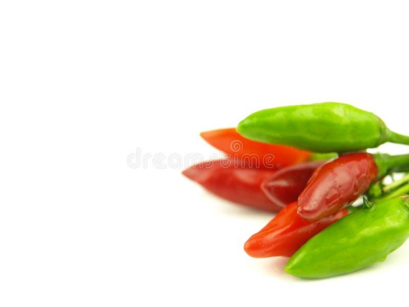 красный цвет горячего перца chili близкий очень стоковое изображение