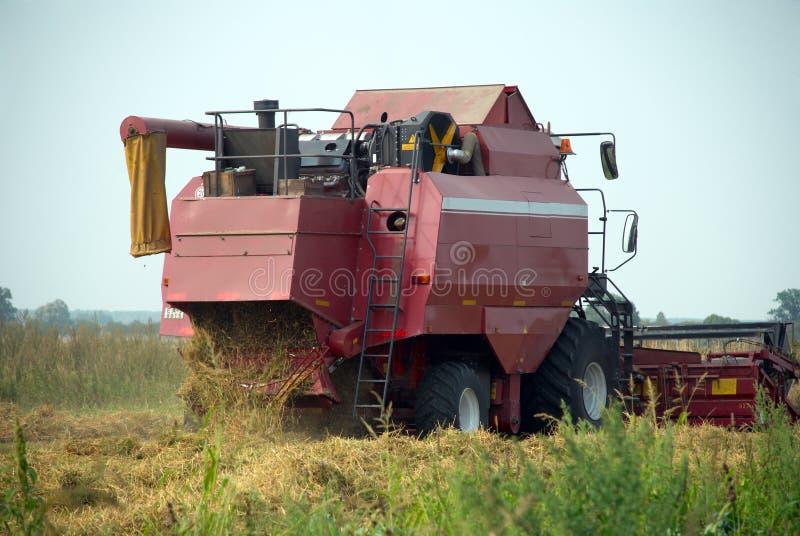красный цвет жатки зерна поля зернокомбайна стоковые фото