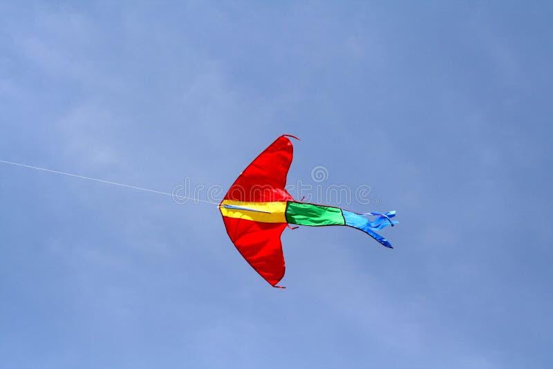 красный цвет змея стоковая фотография rf