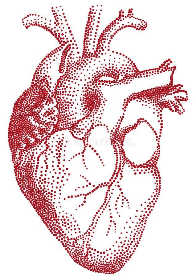 красный цвет иллюстрации сердца иллюстрация вектора