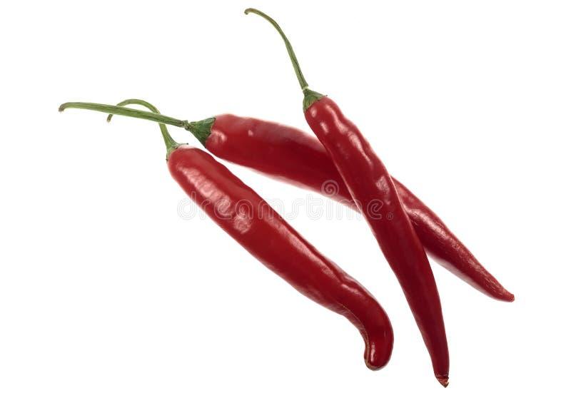 Красный цвет Кайенна перца Chili стоковые фото