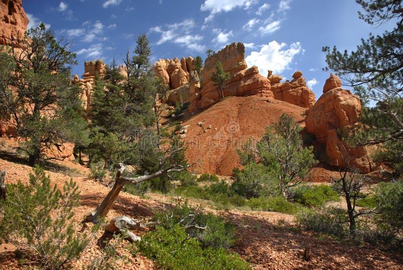 красный цвет каньона стоковое изображение