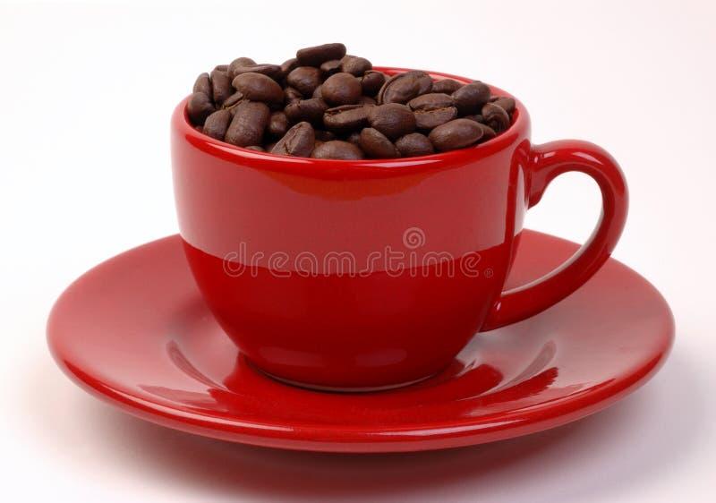 красный цвет кофейной чашки фасолей стоковое фото