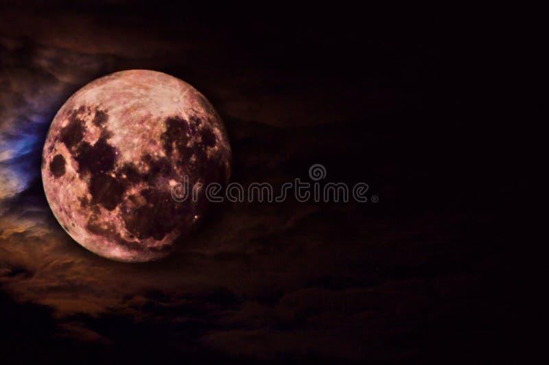 красный цвет луны стоковая фотография rf